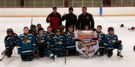 "FYHA Atom Sharks Win the ""STANLEY"" Cup!"