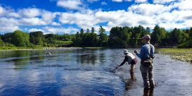 Miramichi Fishing Report for Thursday, August 25, 2016